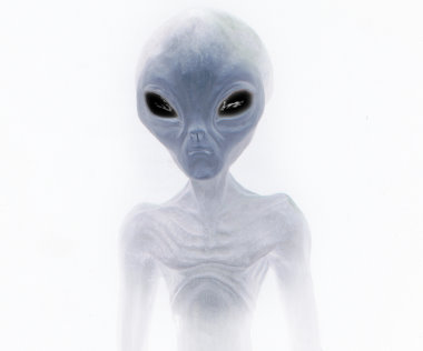 proof_of_alien_life_pic